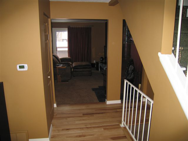Fresh Contemporary &amp Welcoming!